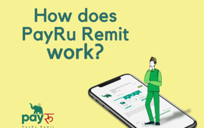How does PayRu Remit work?
